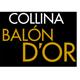 Balón d'Or